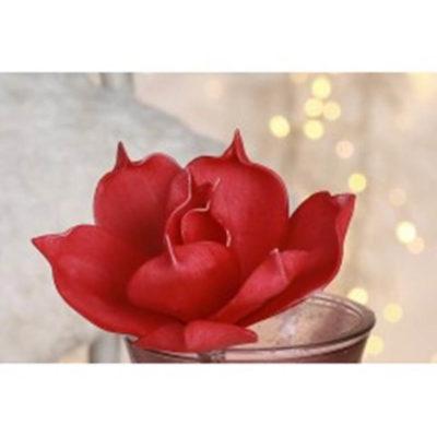 magnolia-virag-piros
