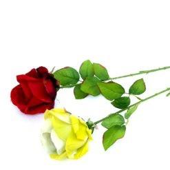 Rózsa szál piros