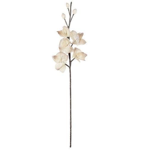 Hatalmas 80cm magas orchidea 5 virággal cappucino színben